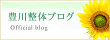 豊川整体ブログ